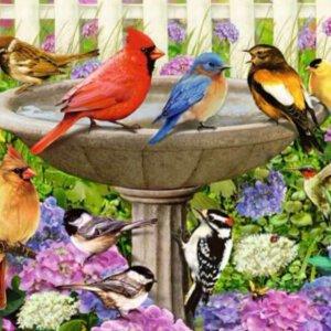 XL-legpuzzel Vogels in de tuin met extra grote puzzelstukken.
